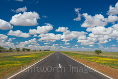 Outback Highway (whitworth images) Tags: road travel flowers blue vacation sky white holiday travelling lines tarmac yellow clouds rural landscape outdoors freedom highway flat scenic free australia roadtrip scene fresh adventure qld queensland outback remote plains distance pure bitumen endless barklytablelands betweencloncurryandwinton