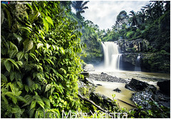 Rain, Please Wake Me Up (Bali Freelance Photographer) Tags: life people bali nature beauty canon indonesia eos photo foto stock culture daily cultural alam budaya balinese culturalevent myudistira madeyudistira myudistiraphotography