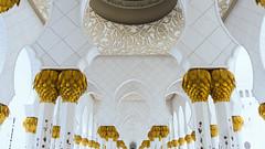 Colums in the Cloister (Bartholomew K Poonsiri) Tags: white building islam religion uae middleeast wideangle mosque structure abudhabi sheikhzayedgrandmosque sonyepz1650mmf3556oss sonyilce6000