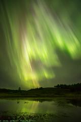 Aurora True Colors (Brett Abernethy(www.brettabernethy.com)) Tags: nightphotography aurora northernlights auroraborealis borealis