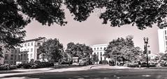 View from Virginia Avenue (kimedwards1123) Tags: city blackandwhite bw building landscape washingtondc streetphotography transportation sigma1835 d7200
