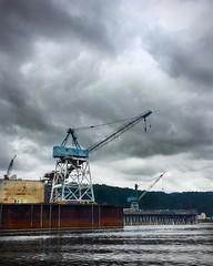 cranes (James C Sheng) Tags: willamette river willametteriver willametteriverjetboat portlan oregon