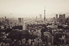 Tokyo tower (jennifer.heuleu) Tags: city bw japan tokyo worldtradecenter tokyotower capitale ville urbain