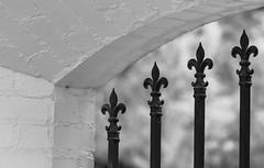 garden window_MG_0024-2 (918monty) Tags: blackandwhite texture window architecture design dallas texas symbol decorative wroughtiron fleurdelis dallasarboretum gardenwindow courtyardwindow