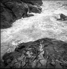 rocks, surf, near Christmas Cove, Monhegan, Maine, Rolleicord TLR, R5 Monobath Devveloper, 5.17.16 (steve aimone) Tags: blackandwhite 120 tlr film monochrome mediumformat rocks surf maine monhegan ilfordfp4 monheganisland rolliecord christmascove epsonperfectionv500 r5monobathdeveloper