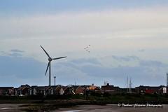 Knott End on Sea_DSC_6393 (@CyprusPictures) Tags: redarrows windturbine fyldecoast thulbornchapmanphotography fyldecoastphotographs freeportretailparkfleetwood