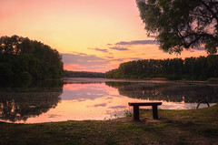 Sunset (Psztor Andrs) Tags: pink light sunset summer sky sun lake tree reed nature water clouds forest bench landscape photography pond nikon hungary mood angle wide shore dslr leafs calmness 18mm andras painterely pasztor d5100
