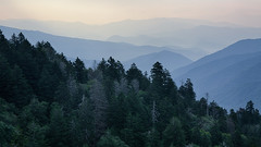 magicalnaturetour May 18, 2016 at 07:00PM (michellelabelle1) Tags: trees summer panorama foothills mountains color detail nature fog landscape us nationalpark haze soft view unitedstates natural cloudy nps tennessee pano relaxing atmosphere biosphere northcarolina panoramic calm hills ridge photograph dreamy layers appalachian peaks delicate nationalparkservice overlook depth smokymountains ridges distant brysoncity greatsmokymountainsnationalpark magicalnaturetour