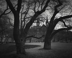Kostel (Vesa Pihanurmi) Tags: kostelsvcyrilaametodje churchofsaintscyrilandmethodius prague praha park trees blackandwhite monochrome branches trunks architecture carlroesner vojtchigncullmann church limbs