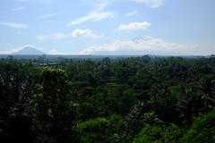 (Valerio Soncini) Tags: bali cloud indonesia volcano id crop indonesien batur agung tegallalang