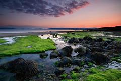 Drumadoon Bay (johnkaysleftleg) Tags: sunset seaweed evening coast scotland rocks arran sigma1020mmf456exdchsm drumadoonbay ndhardgrad06 canon760d