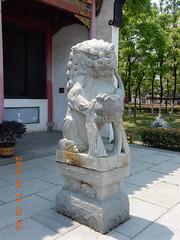 2016_04_19 088 (Gwydion M. Williams) Tags: china cats cat feline lion buddhism lions felines yangtze wuhan hubei hanyang chineselions guiyuantemple stylisedlions