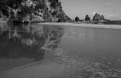 Towards to Rocks (wisnesky1) Tags: ocean sea newzealand blackandwhite bw reflection beach nature water monochrome outside blackwhite seaside sand waves outdoor shore nz nzbeach