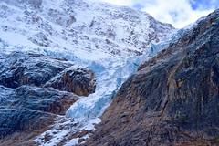 Glaciers Like Close-ups Too (Stephen Guilbert) Tags: travel mountain snow canada mountains ice nikon rocks jasper roadtrip hike glacier trail alberta canadianrockies nikond3300