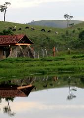 QUILOMBO (BrunoNavas) Tags: brazil gua espelho brasil br sopaulo pasto sp reflexo montanha piquete mantiqueira serradamantiqueira espelhodagua bairrodoquilombo
