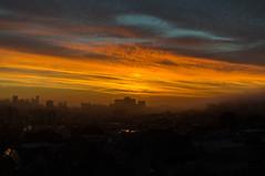 DSC04188-HDR.jpg (falafeLover) Tags: sf sanfrancisco sunlight fog skyline dawn rays