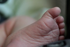 Four days in time (dougwest403) Tags: baby macro foot toes dof time newborn macromondays
