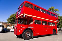 Buses and Cars Central-7634 (A u s s i e P o m m) Tags: au australia f1 newsouthwales haymarket 4001 3642 42101
