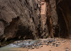 The Great Narrows (Matt Williams Gallery) Tags: travel scale nature water river flow utah nikon rocks hiking earth canyon zion walls zionnationalpark cascade narrows virginriver naturephotography zionnarrows travelphotography d7100 mattwilliamsphotography