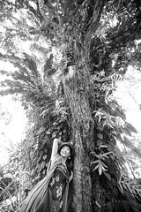 IMG_0126.jpg (Michele Stocco) Tags: hawaii gardenofeden 2016 mauiroadtohana