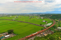 20160612 DSC_3415 (Lin.Jian Liang) Tags: nikon taiwan    d610   2035