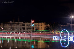 Le monstre des quais de Sane (PrettyLittleStar) Tags: lightpainting night rflexion quaidesane monstre lyon
