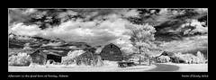 Afternoon in the ghost town of Rowley, Alberta (kgogrady) Tags: old trees blackandwhite bw panorama canada grass clouds rural buildings landscape blackwhite spring nikon afternoon pano farming noone ab nopeople alberta infrared ghosttown weathered rowley dx centralalberta 2016 westerncanada d80 canadianlandscapes cans2s canadianprairies albertalandscapes photosofrowley picturesofrowley