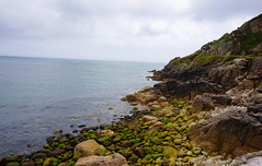 DSC05772 (Glasss Magic) Tags: greatbritain england green countryside cornwall unitedkingdom britain cornish coastpath travelphotography travelphoto