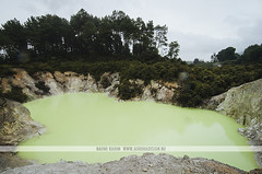 Devil's Bath - Wai-O-Tapu, Rotorua (Naomi Rahim (thanks for 3.9 million visits)) Tags: rotorua newzealand nz 2016 northisland travel travelphotography nikon nikond7000 waiotapu lake devilsbath green pool water sulphur geothermal volcanic wanderlust nature landscape steam neon colourful waiotaputhermalwonderland