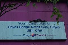 Currys / PC World, Northolt UB5 (LFaurePhotos) Tags: london abandoned sign shop store pigeons urbandecay derelict currys westlondon pcworld northolt londonboroughofealing