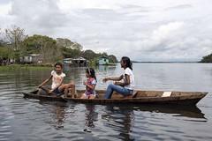_TEF5687 (Edson Grandisoli. Natureza e mais...) Tags: rio menina madeira canoa remo amaznia remando ribeirinha regionorte jovemcabocla