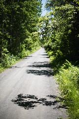 Cyclist (chrism229) Tags: nikon nikkor 50mmf14 d810