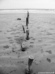 Mandarmani, West Bengal, India (Debarati Bhattacharjee) Tags: mandarmani westbengal india purbamedinipur bayofbengal beach seashore sky ocean sea