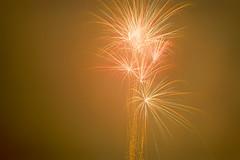 Fireworks Guy Fawkes (Doha Sam) Tags: uk england film night 35mm nikon kodak iso400 guyfawkes scan negative 400 analogue fe portra coolscan bonfirenight kielder c41 portra400 nikonscan kielderforest colorneg coolscan9000ed newportra colorperfect samagnew smashandgrabphotocom linearscan wwwsamagnewcom piccure