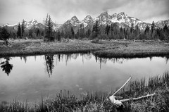 Stark Beauty (dbushue) Tags: bw mountains nature reflections landscape pond nikon nik wyoming 2012 grandtetonnationalpark coth gtnp supershot schwabacherslanding damniwishidtakenthat silverefexpro