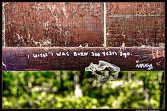 Sentiment (ScottElliottSmithson) Tags: macro nature scott born metro bokeh michigan were years kensington 300 wish elliott sentiment graffitii smithson detroitmetro metrodetroit kensingtonmetropark michiganstateparks detroitdetroit funnygraffiti detroitsuburbs michiganmetroparks mygearandme dtwpuck scottelliottsmithson agokensingtonkensington parkssuburban suburbsmetro iwishiwasborn300yearsago