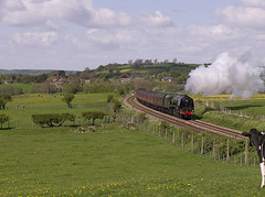 LMS Coronation Class 4-6-2 No 46233 Duchess of Sutherland in charge of The Cumbrian Mountain Express approaching Langwathby on Settle Carlise line 22nd May 2013 (penlea1954) Tags: uk mountain no main class steam line express sutherland carlisle coronation settle duchess the lms langwathby cumbrian 462 46233