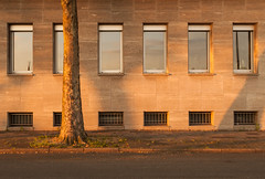 golden brown (coupeuse meier) Tags: city urban garage grau stadt grün braun blau duisburg ruhrgebiet repeat beton fertig alltag albern natu wiederholung öde hysterie monotonie monotonieundalltag