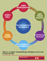 A number of physiotherapy techniques can be used to treat the rider. (sportEX journals) Tags: medicine rehabilitation sportsmedicine sportex sportstherapy sportexmedicine