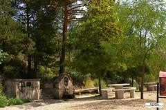 Fuente de Santo Lunio (Historia de Covaleda) Tags: espaa spain fiesta paisaje douro pinos soria historia pinar tradicion duero covaleda