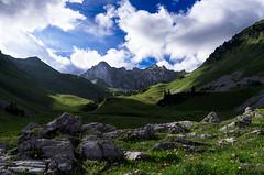 Douceur & Duret - Softness & Hardness (Jp Racine) Tags: summer mountain france rock montagne t rocher massif hautesavoie mountainous rhnealpes cornettesdebise jpracine