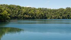 Lake Eacham_DSC4946 (Drumsara) Tags: australia queensland cairns portdouglas greenisland greatbarrierreef northernbeaches northqueensland drumsara athertontablelandbaronfallshamiltonisland