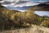 Arklet and the Arrochar's (SwaloPhoto) Tags: autumn trees clouds zeiss scotland nationalpark shadows availablelight lochlomond lochs ze stirlingshire thetrossachs reservoirs arrocharalps benvorlich benvane stronachlachar inversnaid thehighlands locharklet beinnime leefilters distagont235 canoneos5dmkii b829 distagon352ze 09ndproglass stobanfhainne 06hgrad