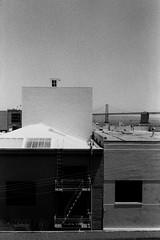 Glancing East (kapshure) Tags: sf sanfrancisco blackandwhite bw film monochrome 35mm blackwhite noiretblanc kodak 400tx pushed 800 bnw sfist