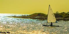 Sailboat at Sunset - Curacao Dutch Antilles (Dunby PICS) Tags: ocean santa beach water netherlands dutch golf boat photo sailing ship pic resort barbara curacao plantation porta sail caribbean curaçao antilles nieuwpoort blancu