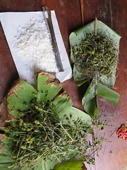 IMG_0652 (Horticulture Innovation Lab) Tags: trellis uganda ucdavis danq trellis2013