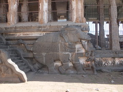 Elephant support (gordontour) Tags: india elephant building art heritage tourism architecture religious temple design ancient asia shiva hindu akasha tamilnadu bharatanatyam cholas chidambaram thillai natarajah lordnataraja