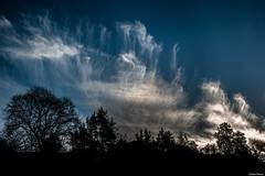 Nuages. (Jérôme Cousin) Tags: blue trees sky cloud tree clouds nikon bleu ciel arbres 28 nuage nuages tamron arbre 2470 d700