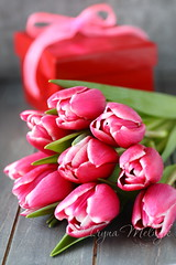 Beautiful pink tulips with gift box on wooden background (Iryna Melnyk) Tags: life wood pink wedding stilllife white holiday plant flower color green love home nature floral beautiful beauty vintage festive easter season table design wooden leaf spring stem flora colorful pretty day natural bright symbol blossom top background jubilee rustic seasonal decoration valentine romance fresh petal celebration gift tulip bunch bloom romantic bouquet greeting arrangement