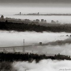 Fog Lanes (R J Ruppenthal) Tags: city canada fog skyline vancouver buildings harbor cityscape bc waterfront harbour britishcolumbia foggy pacificnorthwest westcoast rolling mountbaker freighter